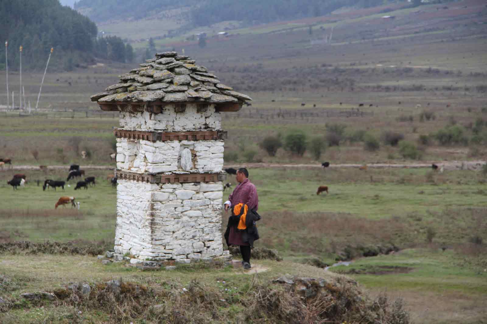 BHUTAN: A MONK AND A CARPENTER